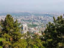 City landscape with evergreen trees in foreground on a sunny day royalty free stock photo