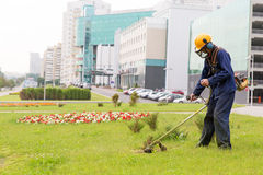 City landscaper mowing lawn Royalty Free Stock Images