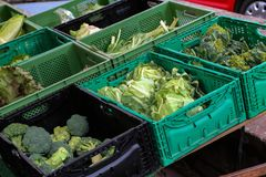 City market. Fresh vegetables. Fresh vegetables for sale. City market. Fresh vegetables for sale stock photo