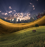 City meadow Stock Image