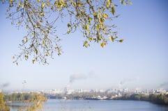 City Meets Nature Royalty Free Stock Photos