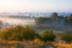 City at misty sunrise Stock Images