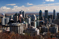 City of Montreal. Panorama of the city of Montreal royalty free stock photos