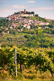 The city Motovun Royalty Free Stock Photo