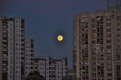 City night full moon Stock Image