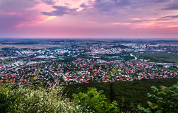 City of Nitra from Above. At Sunset with Plants in Foreground Royalty Free Stock Photography