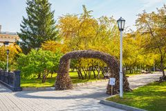 Arch of birch branches in the Park of the Novosibirsk state academic Opera and ballet theatre stock images