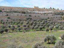City of Jerusalem. Israel. Panorama Of The Religious Architecture Of The Old Part Of The City. Stock Image