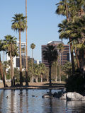 City Of Phoenix Downtown Buildings Royalty Free Stock Image