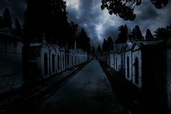 Free City Of The Dead Royalty Free Stock Photography - 39305717