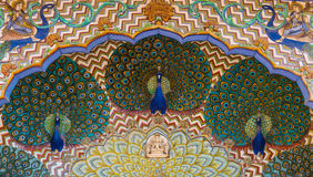 City Palace peacocks. Stock Images
