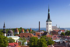 City panorama from an observation deck of Old city's roofs. Tallinn. Estonia. Stock Image