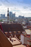 City panorama from an observation deck of Old city's roofs. Tallinn. Estonia. Stock Images