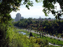 City park. A beautiful city park in summer Stock Photography
