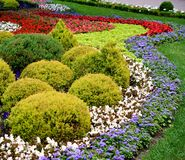 City Park. The city park city of Stavropol is a fine example of art park. Flower carpets in different colors and shapes, striking in its beauty Royalty Free Stock Images