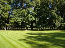 City park. In Saint Petersburg (Russia) at summer time Royalty Free Stock Image