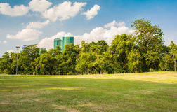 City park. A park is an area of open space provided for recreational use, usually owned and maintained by a local government. Grass is typically kept short to Royalty Free Stock Images