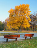 City park in autumn - Bratislava Royalty Free Stock Photos
