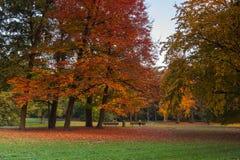 City park in autumn colors Stock Photos