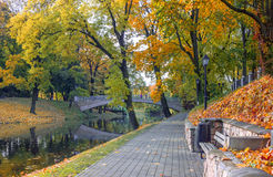 City park in autumn Royalty Free Stock Photography