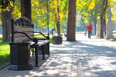 City park in autumn Royalty Free Stock Photos