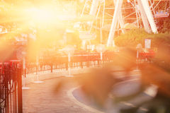 City park backlit by sunset Royalty Free Stock Photos