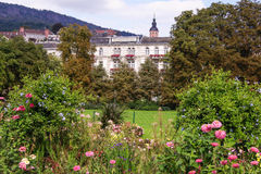 City park with beautiful flowers Royalty Free Stock Image