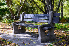 City Park Bench Under the Shade Royalty Free Stock Photography
