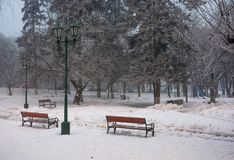 City park with benches and lantern in hoarfrost. Wonderful foggy winter morning Royalty Free Stock Images