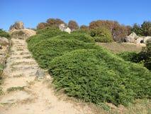 City Park-Botanical Garden. Vegetation, rocks, sky royalty free stock photos