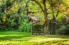 City Park. Novi Sad in autumn colors Royalty Free Stock Image