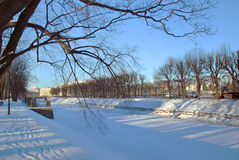 The city park on a cold day in winter. View of the city park on a cold day in winter Stock Image