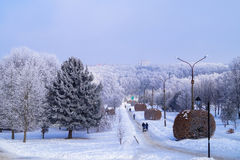 City Park covered with frost beautiful landscape Royalty Free Stock Photo
