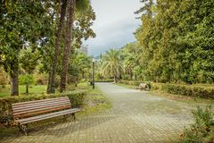 City park, an empty bench and alley. Stock Photo