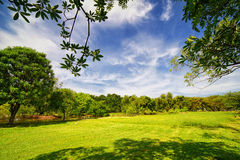 City park with green lawn and some trees. Blue sky clouds stock photography