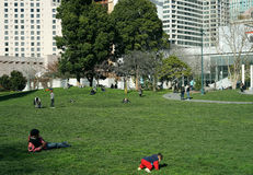 City park and green space stock photography