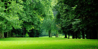 City-park Royalty Free Stock Images