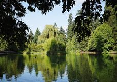 City Park, Laurelhurst, Portland, Oregon. Landscape design replicates Nature in the City - a park with nature like setting based upon the principles of an stock image