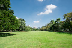 City park with modern building background Stock Image