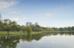 City park with modern building background Royalty Free Stock Photography