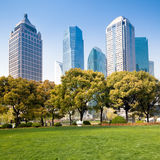 City park with modern building background in shanghai Stock Photography