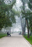 City park in morning fog. Wide lane in city park in morning fog. People on benches Royalty Free Stock Photography