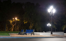 City park at night Royalty Free Stock Photo