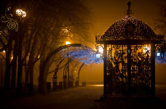 City Park at night in the fog. Urban park at night, romance, fog, lamps and light Royalty Free Stock Image