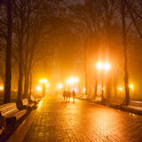 City park at night Stock Image