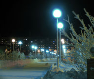 The city park at night. Stock Image