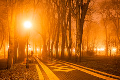 City park at night. People in city park at night Royalty Free Stock Photo