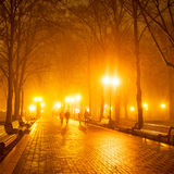 City park at night. People in city park at night Stock Photography