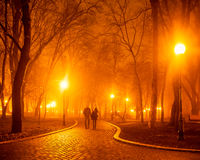 City park at night. People in city park at night Royalty Free Stock Photos
