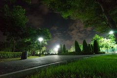 City park in the night with a resting place. The landscape of th. E city park in the winter royalty free stock photo